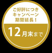 【ご好評につきキャンペーン期間延長!】12月末まで